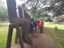 Kestrel Visiting the Yorkshire Sculpture Park