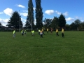 Tag Rugby (1)