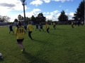 Tag Rugby (4)